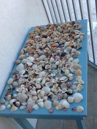Tropical Beach Resorts: treasure