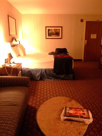 The Orleans Hotel & Casino: view of room from the sofa area