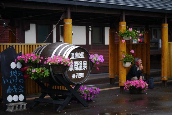 Mashu Onsen Road Station: 入り口の看板