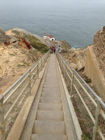 Point Reyes Lighthouse: The walk down