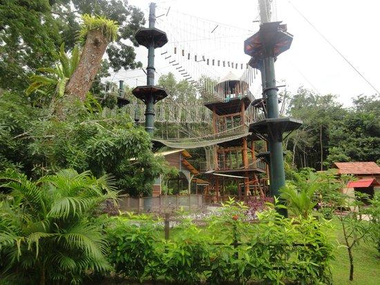 Escape Adventureplay: Monkey Business