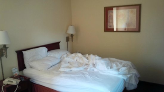 SureStay Plus Hotel Chicago Lombard: Bed was smaller than expected