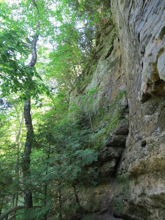 Munising Falls: Cliff face and forest on west access to Musining Falls PRNLS August 2014 IMG_9995