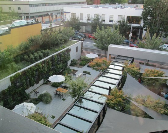 Hotel Modera: view of the garden area from our window