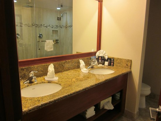 Coast Anabelle Hotel: Double sinks
