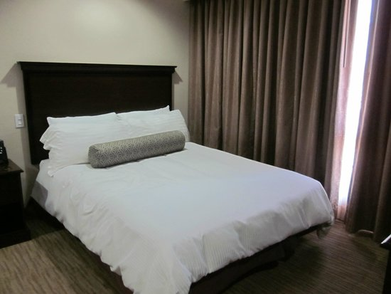 Coast Anabelle Hotel: Queen bed with body pillow