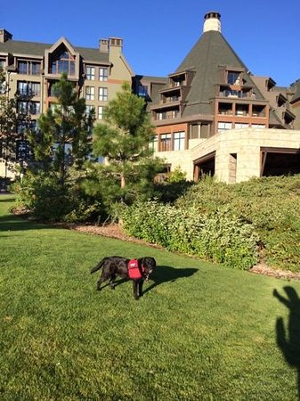 The Ritz-Carlton, Lake Tahoe : what grounds!
