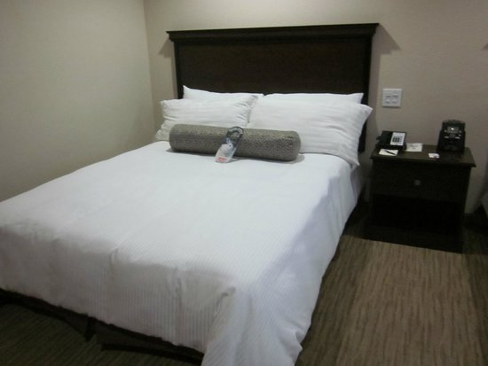 Coast Anabelle Hotel: Another queen bed with body pillow