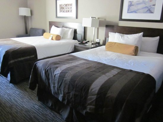 Wingate by Wyndham Los Angeles International Airport LAX: 2 queen beds