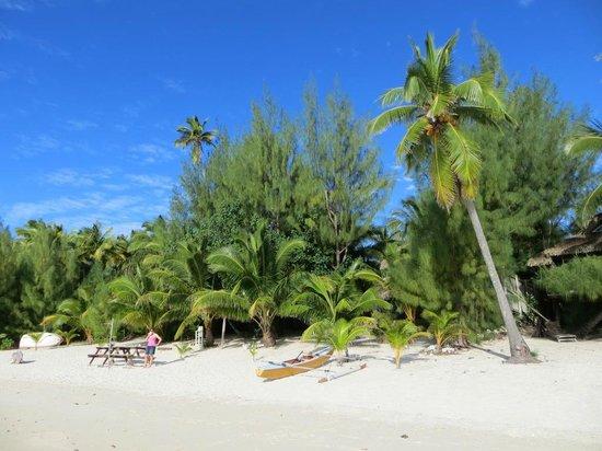 Matriki Beach Huts: Beach view