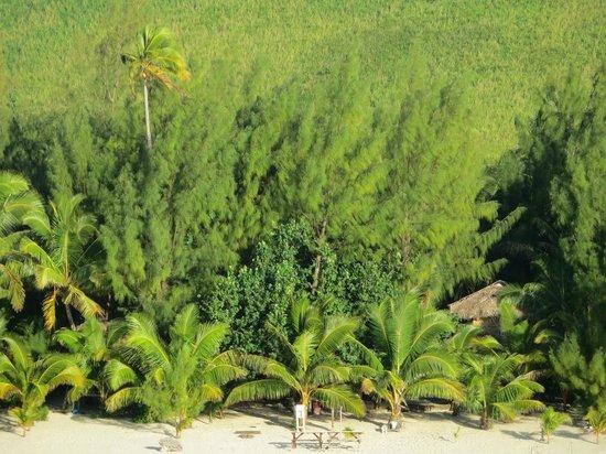 Matriki Beach Huts : Reef view