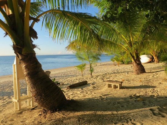 Matriki Beach Huts: Hammock view
