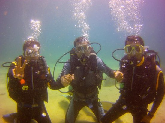 South Sea Divers