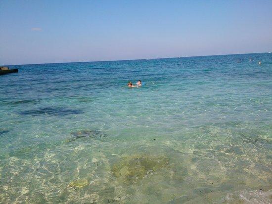 Laguna Resort and Spa: Море