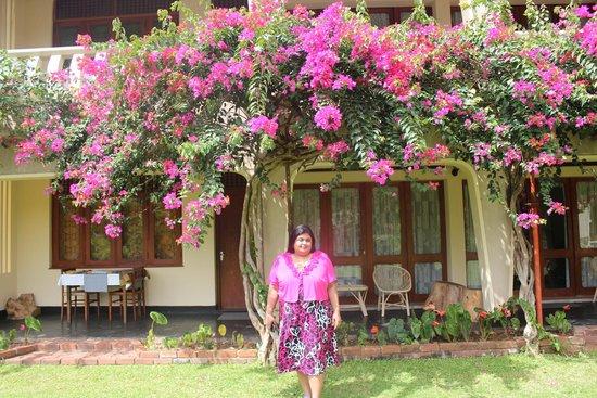 Royal Tourist Lodge: Lawns