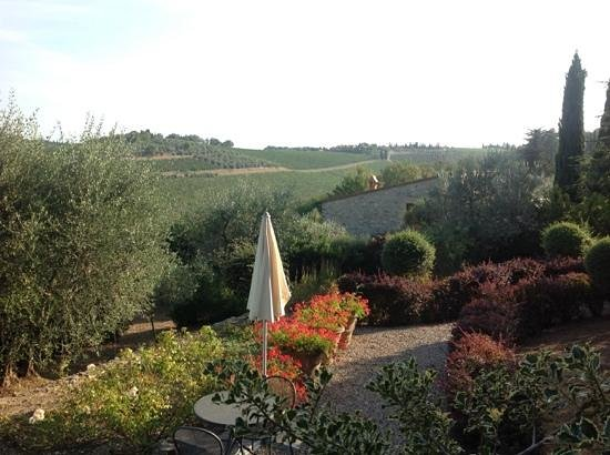 Montebuoni: part of the view from the terrace of L'Olivetta