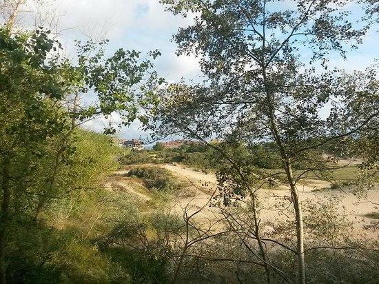 Domein Westhoek : zicht op duinen