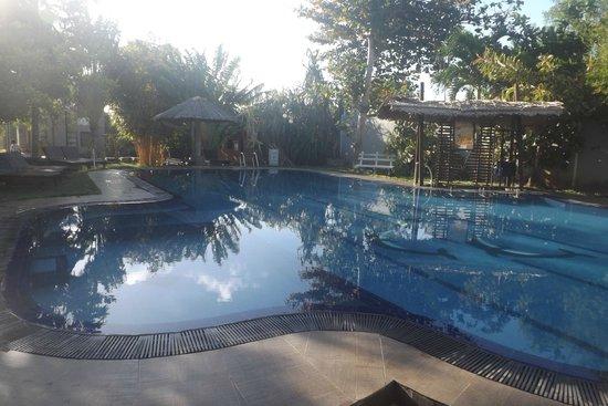 Hotel Chandrika: The pool area