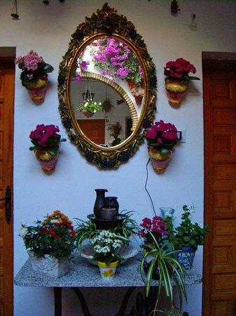 Patios de Córdoba: Mirror