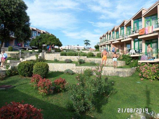 All-inclusive Resort Funtana: Il verde che circondano le camere