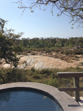 Londolozi Founders Camp: View from our plunge pool