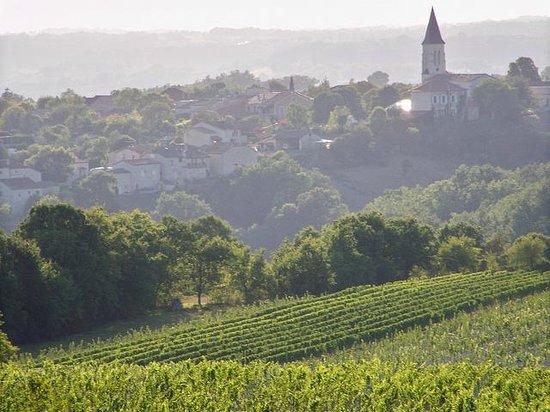 Tour de Belfort - SCEA Le Domaine de Belfort
