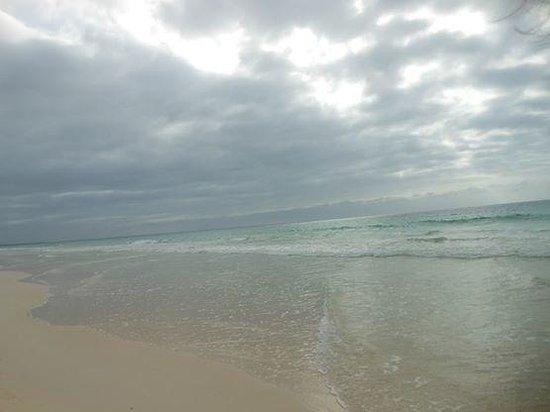 Iberostar Club Boa Vista: spiaggia