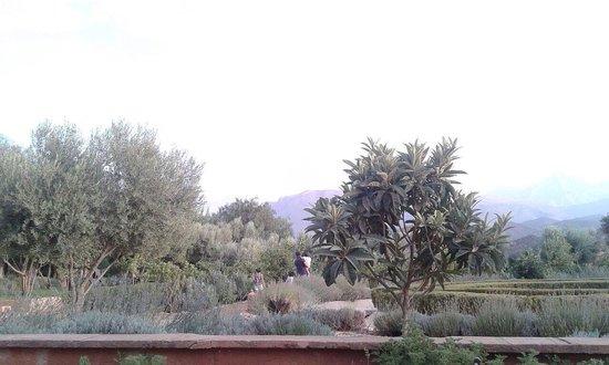 Kasbah Bab Ourika: Jardines