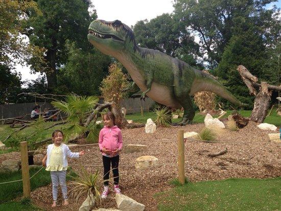 Marwell Zoo: Plastic dinosaurs
