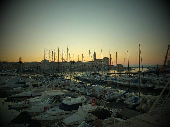 Hotel San Paolo al Convento : Il porto di Trani