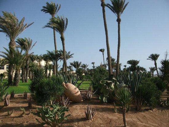 Zephir Hotel & Spa : jardin