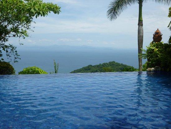 Hotel Villa Caletas: Vue piscine