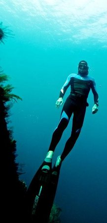 Fusion Freediving : Tulamben ship wreck, last day 10/08/2014