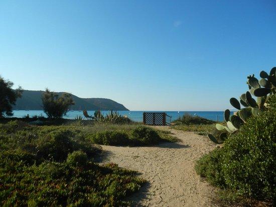 Mare di Lacona - Foto di Il Giardino di Sabbia, Lacona - TripAdvisor