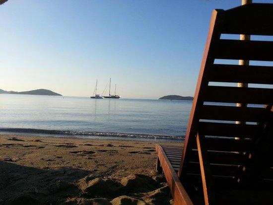 Swell Beach Bar: By the sea!