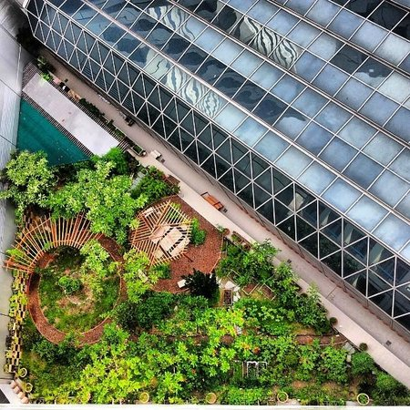Swissotel The Stamford Singapore: Rooftop herb garden a few floors below my balcony