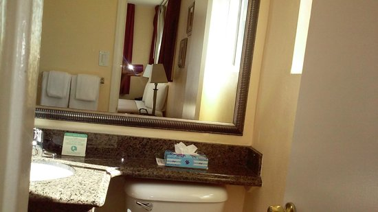 Marina Inn and  Suites: mirror