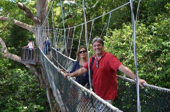 Shangri-La's Rasa Ria Resort & Spa: A view of the canopy walk at the Nature Reserve