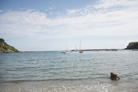 Bay of Silence : Il mare
