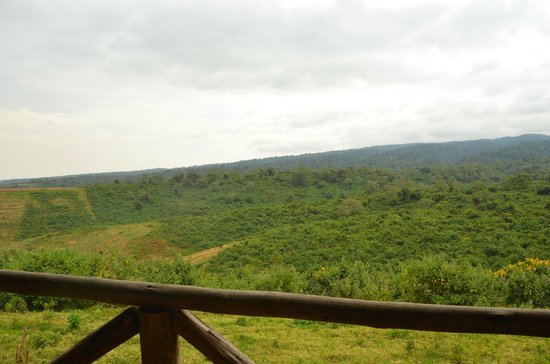 Crater Forest Tented Lodge: View from our deck