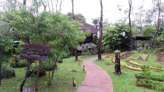 Six Senses Yao Noi : Organic gardens growing some of the salads served in the restaurants