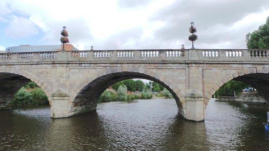 Sabrina Boat Trips: Bridge