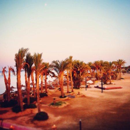 Kahramana Beach Resort : Beach