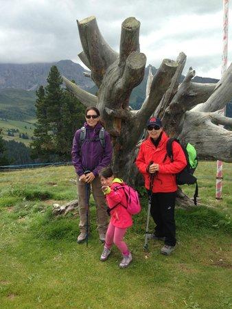 Hotel Alpenroyal: all'attacco dell'alpe di siusi!