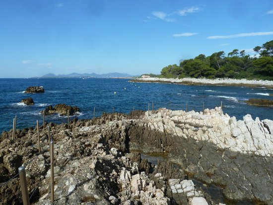 Le Sentier du Littoral, Cap d'Antibes: Just one of the views on this amazing trail