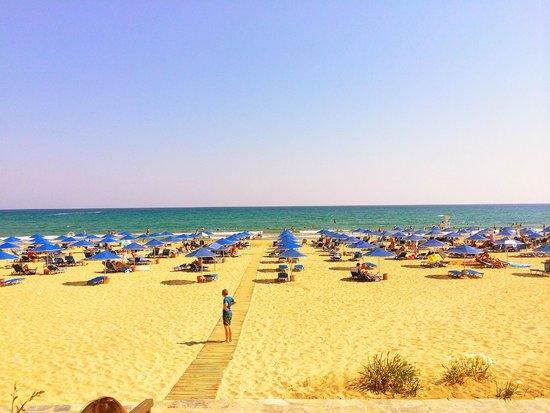 Pilot Beach Resort : Beach Area (loved it )
