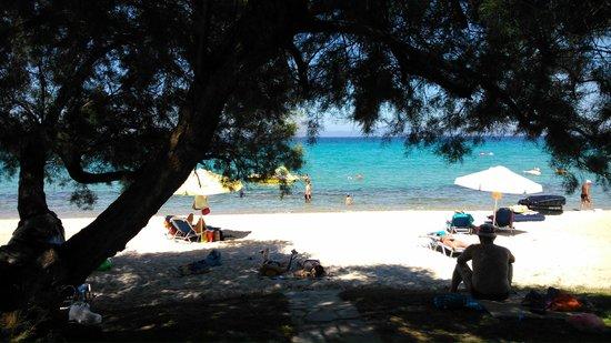 Pallini Beach Hotel: beach