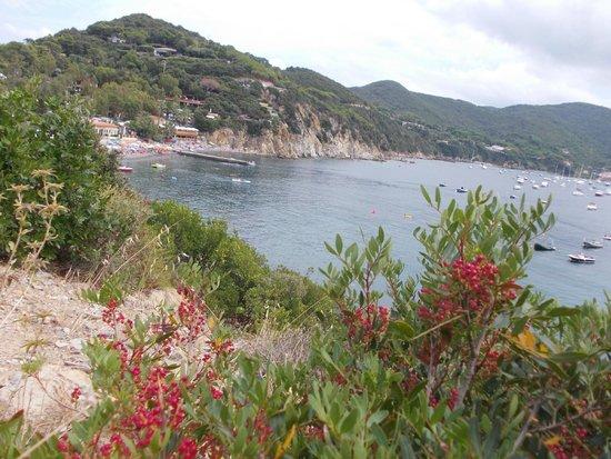 Camping Enfola : вид на один из пляжей отеля