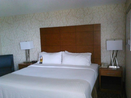 Holiday Inn Raleigh Downtown: room
