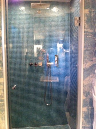 Hotel Beethoven Wien: Powerful shower-shame it doesn't drain well!